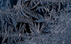 мороз, стекло, мороз на стекле, узоры, замороженное стекло, узоры на стекле, текстура