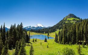 Tipsoo Lago, Mount Rainier National Park, lago, Montagne, alberi, paesaggio