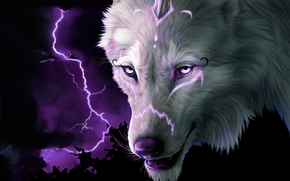 wolf, view, lightning, 3d, art