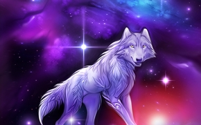 loup, Univers, 3d, art