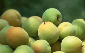 fruta, flora, plantas, fruta, sabroso, cereza-ciruela, comida