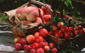 fruta, flora, plantas, fruta, sabroso, cereza-ciruela, duraznos, cesta, comida