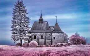 Kapel van de Bijstand, Notre Dame de Bon Secours, Hoegaarden, Bélgica