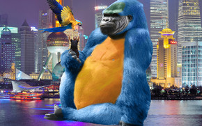 Photoshop, King Kong, monkey, parrot