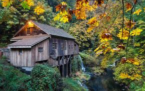 осень, Cedar Creek Grist Mill, Woodland, Washington, Вудленд, штат Вашингтон, река, мельница, лес