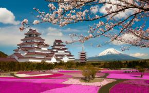 Aizuwakamatsu Castle, Tsuruga Castle, Aizuwakamatsu, Fukushima, Japan, Mount Fuji, Замок Аидзувакамацу, Аидзувакамацу, Фукусима, Япония, Фудзияма, замок, парк, сакура, ветки, цветение, вулкан