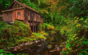 Cedar Creek Grist Mill, Woodland, Washington, Вудленд, штат Вашингтон, река, мельница, лес, осень