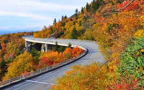 Highway Linn Cove, Viadotto Cove Linn, USA, ponte, autunno, stradale, paesaggio