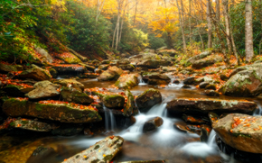 autunno, fiume, foresta, alberi, pietre, cascata, paesaggio