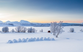 Balsfjord, Troms, norway, Lyngen Alps, Balsfjord, Troms, Norway, winter, snow, drifts, Mountains, small hut, trees, panorama