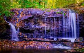 森林, 树, 岩石, 瀑布, 性质