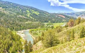 Grand Teton, Wyoming, река, горы, деревья, вид с верху, пейзаж