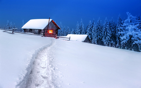 winter, drifts, snow, cabin, trees, footpath, landscape