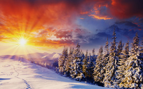 Sonnenuntergang, Winter, Bäume, Drifts, Spuren, Mountains, Landschaft, art