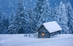 winter, snow, drifts, trees, cabin, landscape