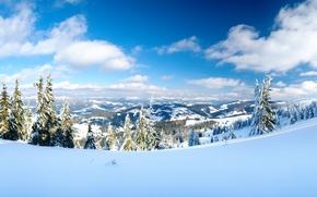 panorama, invierno, Montañas, árboles, nieve, derivas, paisaje