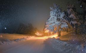 зима, снег, дорога, деревья, фонари, ночь, пейзаж