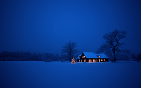 night, winter, snow, drifts, cabin, Christmas tree, New Year