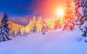 winter, sunset, snow, trees, drifts, landscape