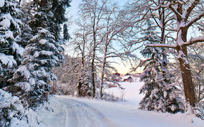 invierno, carretera, nieve, derivas, bosque, árboles, paisaje