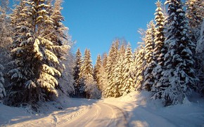 winter, road, forest, trees, landscape, Norway
