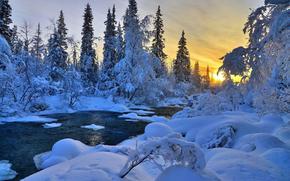 puesta del sol, río, invierno, árboles, bosque, derivas, paisaje