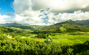 Kauai Island, Hawaiian Islands, Mountains, field, view from veghu, landscape