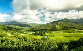 Остров Kauai, гавайские острова, горы, поля, вид с вегху, пейзаж
