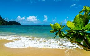Wyspa Kauai, Wyspy Hawajskie, morze, Brzeg, krajobraz