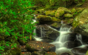 Smoky Mountain National Park, small river, vodopad.kamni, nature