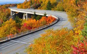 Highway Linn Cove, Viadotto Cove Linn, USA, ponte, autunno, paesaggio