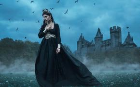 Tara Valentine, ragazza, regina, vestire, castello, uccelli
