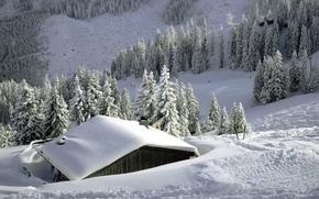 invierno, Montañas, árboles, cabina, nieve, derivas, paisaje