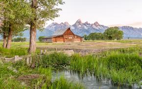 granero thomas moulton, Mormón Row, Parque Nacional Grand Teton, choza, Montañas, árboles, paisaje