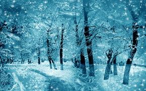 зимний вид за стеклом, парк, деревья, дорога, зима, узоры, мороз, пейзаж