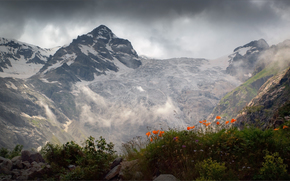 height, Mountains, Digoriya, Caucasus, paints, glacier, Poppies, Flowers, mood, sky, clouds, lighting, North Ossetia, Russia, priproda, landscape, Tanatseti
