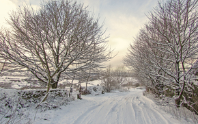 winter, road, snow, trees, landscape