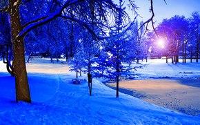 zima, park, staw, zachód słońca, śnieg, drzew, krajobraz