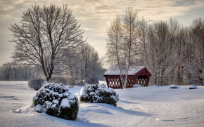 winter, park, trees, arbor, drifts, snow, Southern New Hampshire, landscape