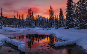 Banff, Canada, sunset, winter, river, trees, landscape