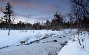 sunset, winter, snow, river, trees, landscape
