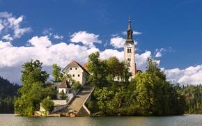 Assunzione di Maria Santuario, Bled, Slovenia, Lago di Bled, Chiesa dell 'Assunzione della Vergine Maria, Lago di Bled, Bled, Slovenia, isola, lago, chiesa