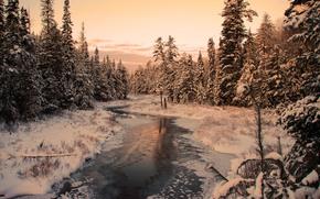 puesta del sol, invierno, bosque, río, nieve, árboles, paisaje