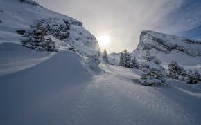 hiver, coucher du soleil, neige, arbres, paysage, Montagnes