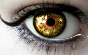ojo, ojos, humano, hombre, ver