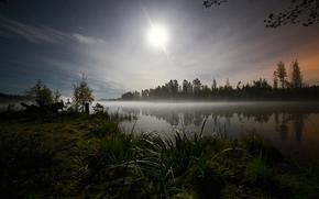 notte, Stella, erba, alberi, foresta, lago, acqua, cielo, luna, spazio, romanticismo, percorso, Priozersk District, Zona di Leningrado, Russia, natura, paesaggio
