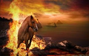 sunset, sea, fire, horse