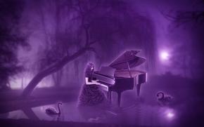 noche, luna, estanque, piano, chica, Cisnes