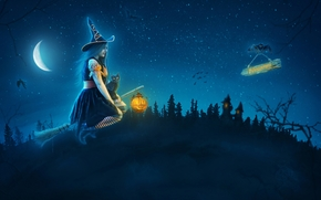 night, moon, vedmachka on a broomstick, kitten, fantasy