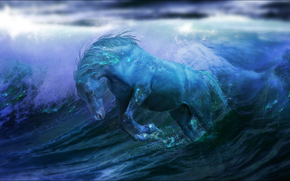 sea, waves, horse